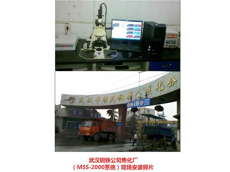 WISCO Coking Plant