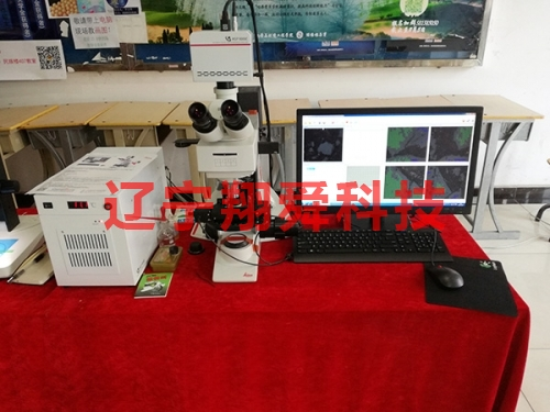 MSP 9000c Automatic intelligent coal and coke microanalysis system
